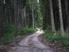 pot na stegovnik
