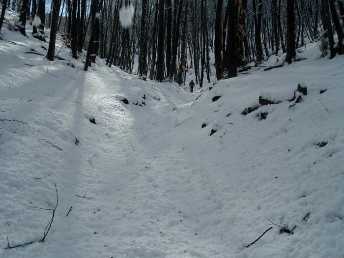 Sneg se topi na začetku poti.