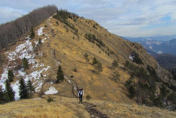 kamniski vrh