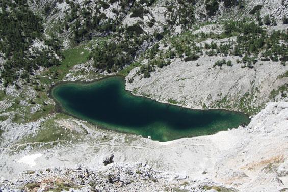 Veliko jezero ali ledvica