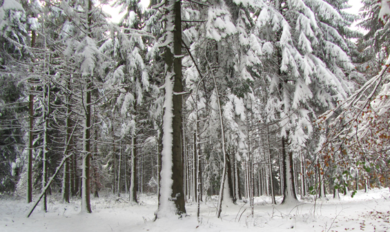Zima na Krimu.