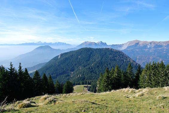 Javorniška planina.