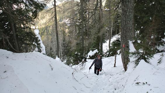 napihan sneg na poti