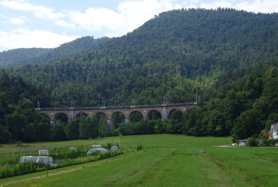 Viadukt v Borovnici