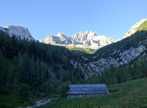 Na planini V Koncu.